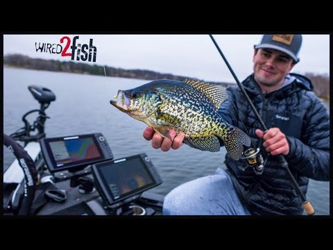 Find and Catch Suspended Crappies in Open Water | Advanced Tactics