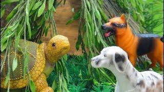 Мультфильмы про животных для детей. НОВЫЙ ДОМ ДЛЯ ЧЕРЕПАХИ.  Маленький обманщик