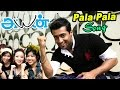 Ayan- Ayan Songs | Tamil Movie Video songs | Pala Pala Video Song | Harris Jeyaraj Hits | Surya hits