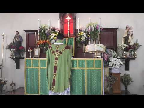 Angelus Press Divine Office for the Laity! | tradcatmaria vlogs from YouTube · Duration:  14 minutes 58 seconds