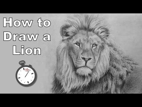 how-to-draw-a-lion-in-pencil---time-lapse-drawing-tutorial