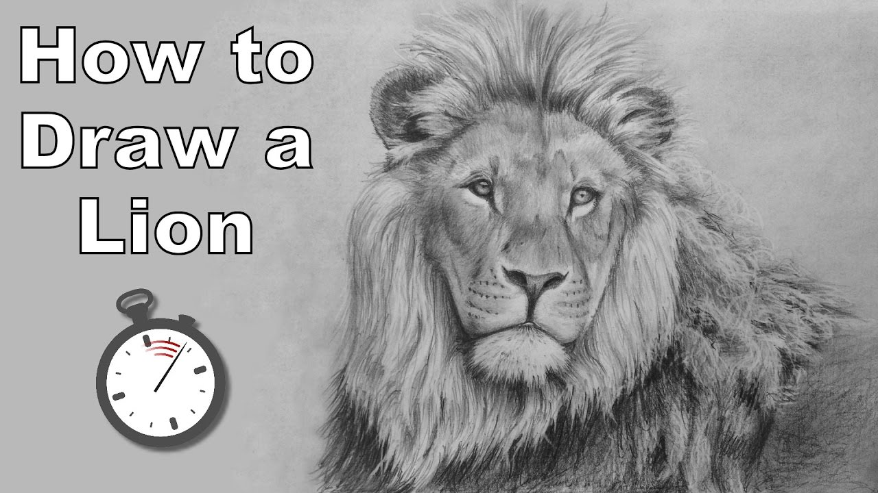 How to draw a lion in pencil time lapse drawing tutorial