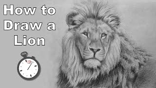How to Draw a Lion in Pencil - Time Lapse Drawing Tutorial