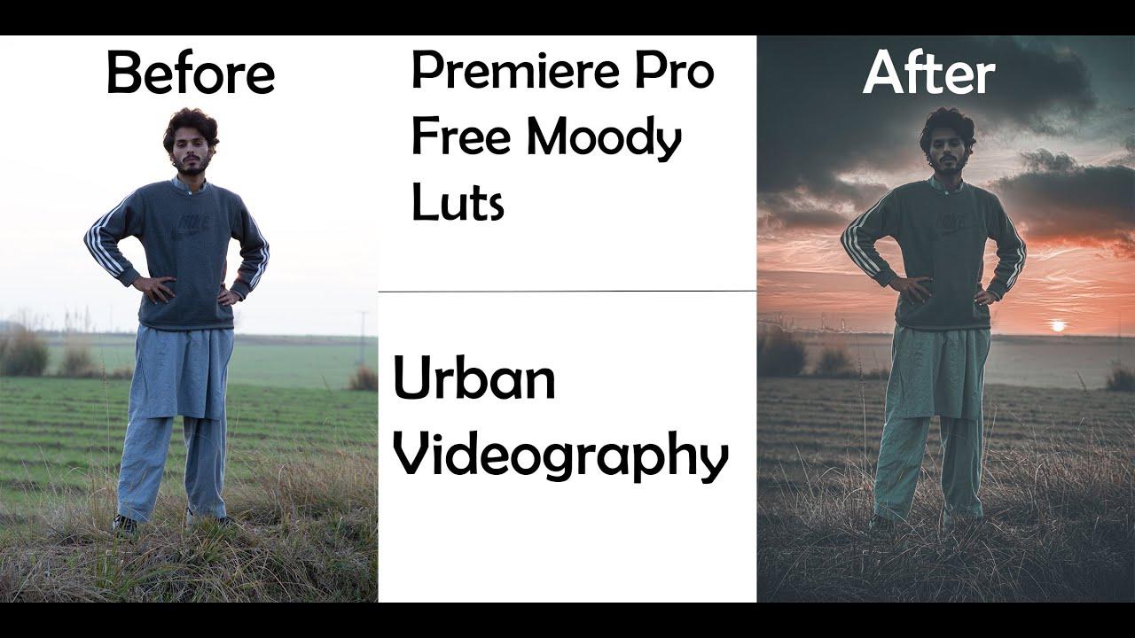 Premiere Pro free luts |Premiere Pro Cinematic luts |Premiere Pro Moody preset |Premiere Pro presets