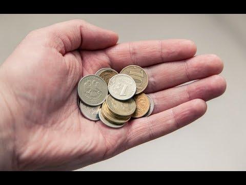 Экономика (доходы и расходы) маленького фермерского ...