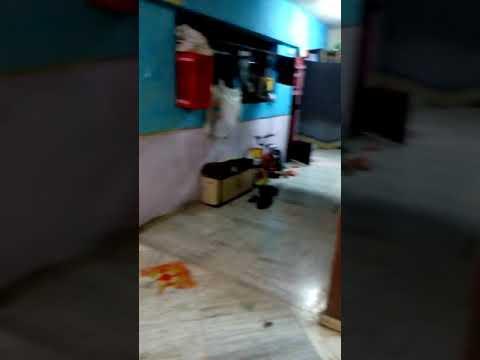 1 BHK flat at Chembur Shramajivi Housing Society