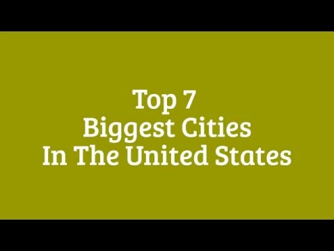 Top 7 Biggest Cities in the United States