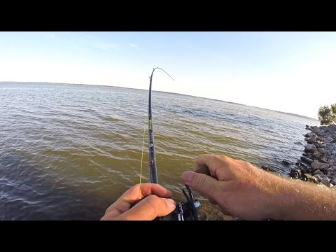 BANK Fishing A GIANT LAKE!?!?