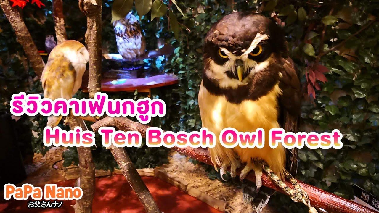 รีวิวคาเฟ่นกฮูกญี่ปุ่น โคตรน่ารัก Huis Ten Bosch Owl Forest | PaPa Nano
