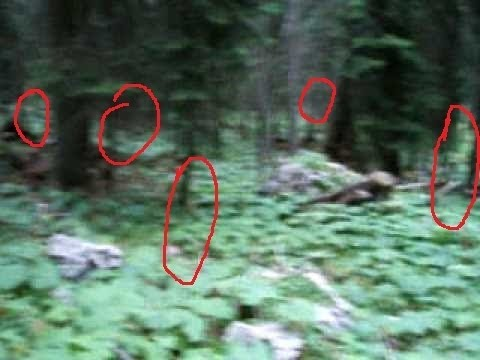 INCREDIBLE GHOST FOOTAGE - INVISIBLE ENTITIES, minding their own business