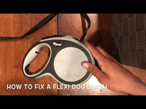 How To Fix A Flexi Leash (without Screws)