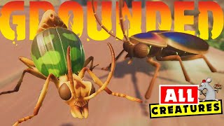 GROUNDED - What CREATURES are In The Game Now And In The Future!