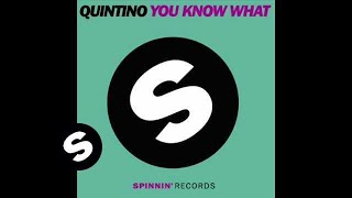 Quintino - You Know What (Alvaro Remix)