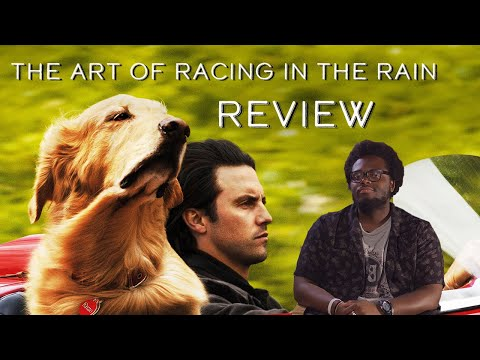 Is The Art of Racing in the Rain Just Another Dog Movie? - Coog Cinema Reviews