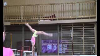 Спортивная гимнастика(тренировочные сборы)