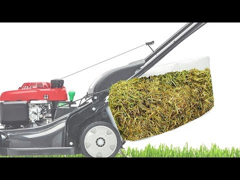 Lawn Mower Cut Quality: Bagging