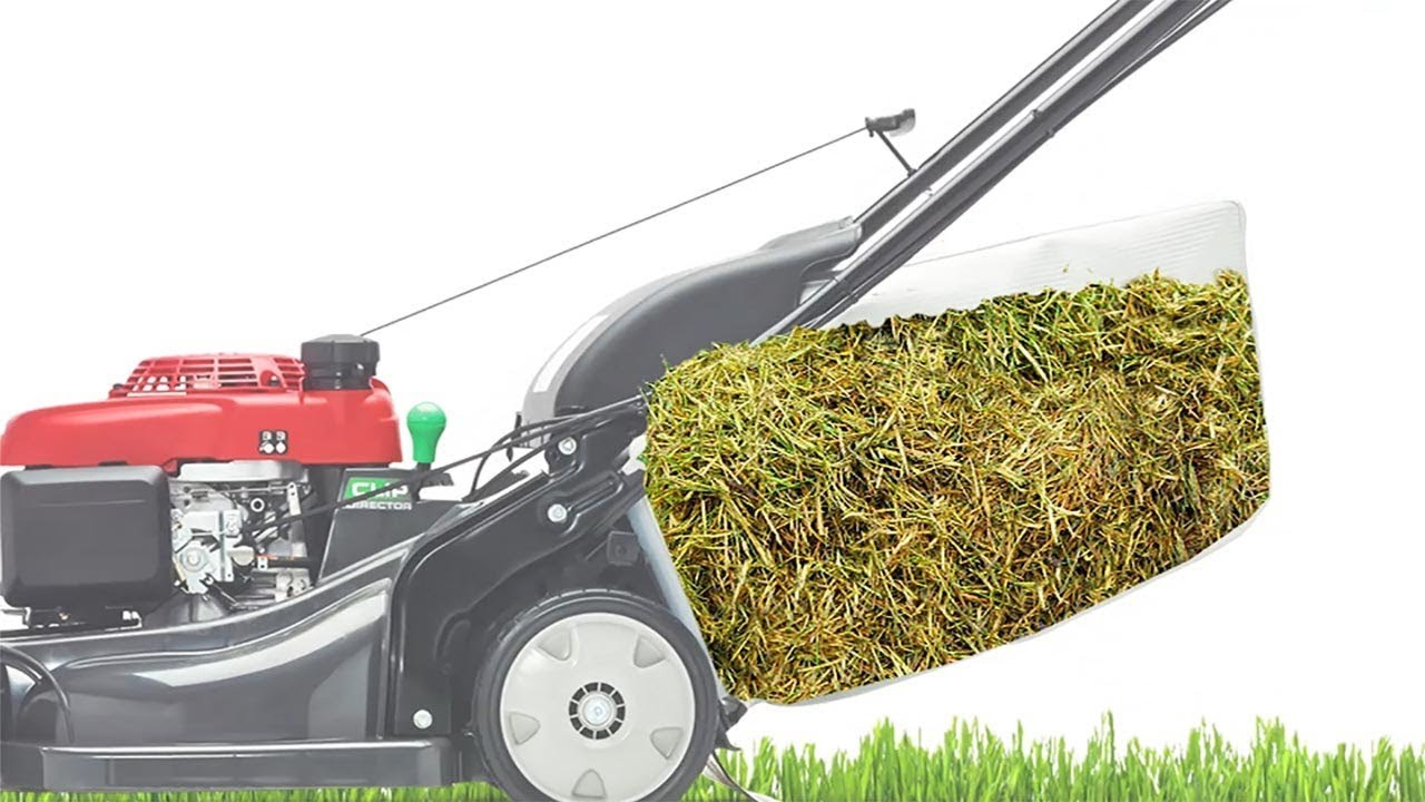 Lawn Mower Cut Quality Bagging