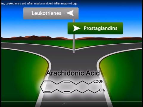 Eicosanoids: Prostaglandins, Leukotrienes and Inflammation and Anti-inflammatory drugs