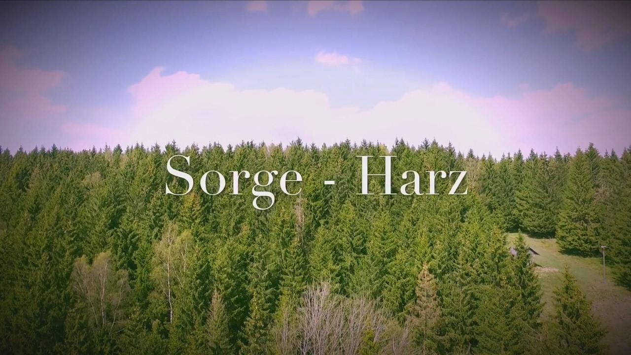 Sorge Harz