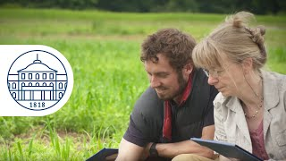 International Master Programmes of the Faculty of Agriculture - University of Hohenheim