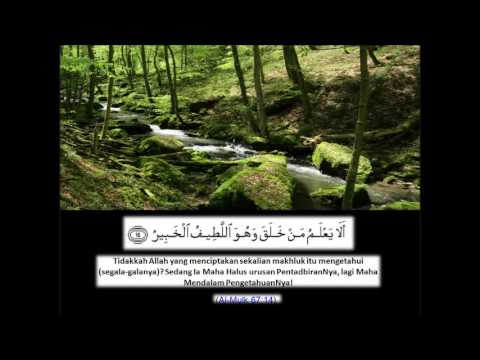 Surah Al Mulk سورة الملك Ustaz nafis yaakub