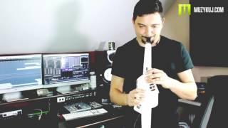Roland AE-10 Song SAX