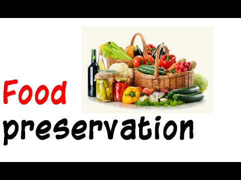 Food Preservation Youtube