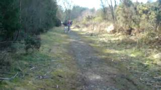 Eithie woods by Arbroath learning to Scooter with Wil & Aurora www....