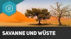 Savanne und Wüste - Die Tropen III - Klimazonen 4 ● Gehe auf SIMPLECLUB.DE/GO & werde #EinserSchüler
