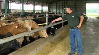 La traçabilité des animaux d'élevage et des aliments au Québec - MAPAQ