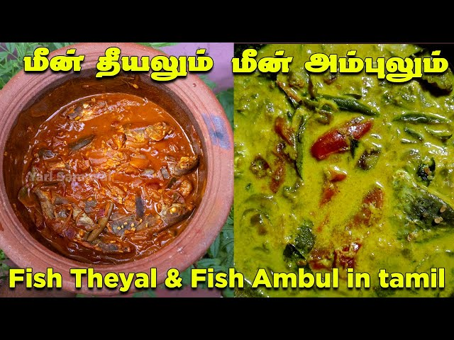 யாழ்பாணத்து மீன் தீயலும் யாழ் முறை மீன் அம்புலும்   Fish Theeyal   Fish Ambul   Meen Theeyal tamil