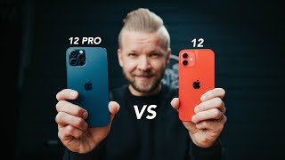 iPhone 12 VS 12 Pro // Camera Comparison Review