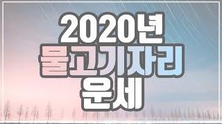 [[별자리운세]] 2020년 물고기자리 운세 2월 19일 ~ 3월 20일생 l 신년운세