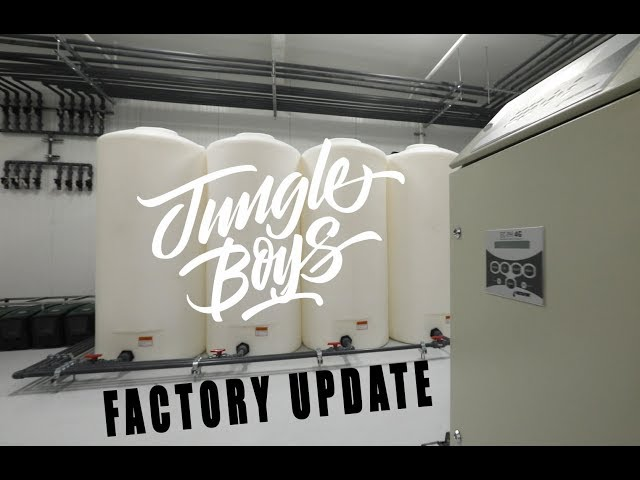 Jungle Boys Factory update