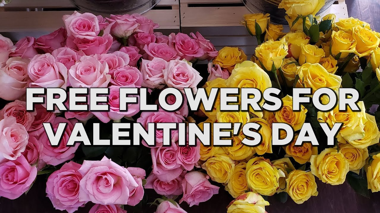 How to score some free flowers and chocolate on Valentine's Day