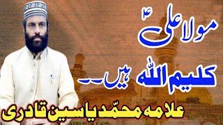 Mola Ali Kaleemullah Hain Sultan-ul-Dalail Wakil-e-Ahel-e-Bait Allama Muhammad Yasin Qadri