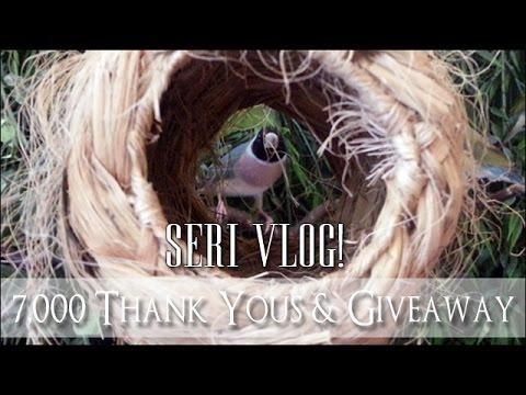Seri Vlog - 7,000 Thank Yous Pet Special!