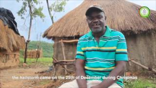 Christmas disaster in Mazowe Mash Central Province in Zimbabwe