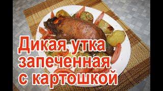 Дикая утка в духовке с картошкой – рецепт как приготовить дикую утку в духовке с картошкой