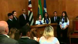 TCC DOS MONSTROS SAGRADOS DA ETEC 2013