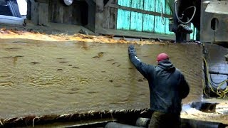 Dangerous Biggest Wood Sawmill Machines Working - Fastest Wood Cutting Chainsaw Machine