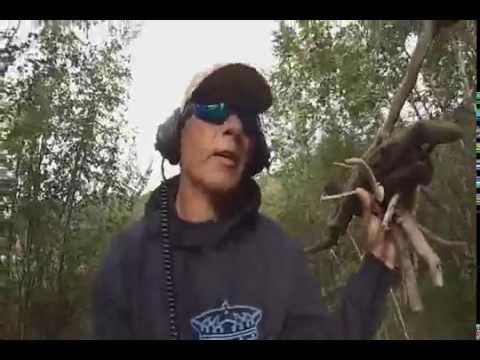 metal detecting forgotten gold rush town (chena ) fairbanks alaska