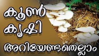 കൂൺ കൃഷി എങ്ങനെ ലാഭകരമാക്കാം ? Mushroom farming | how to | Tips & Tricks