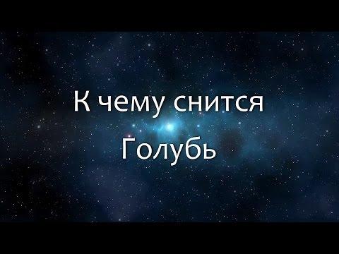 К чему снится Голубь (Сонник, Толкование снов)