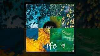 Colour Haze - Life (We Are)