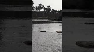 وادي حنيفه الرياض ١٠/١١/٢٠١٨ #امطار_الرياض