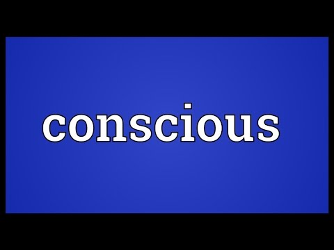 Conscious Meaning