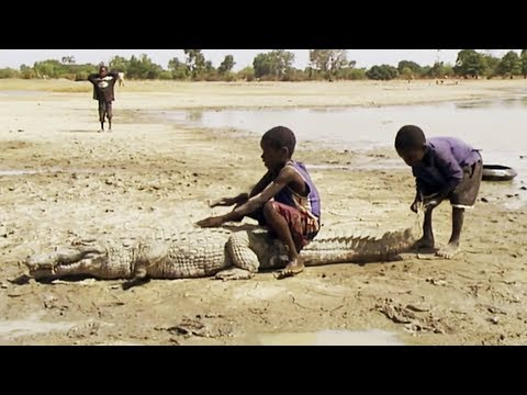 Classe nature au Burkina Faso - ZAPPING SAUVAGE