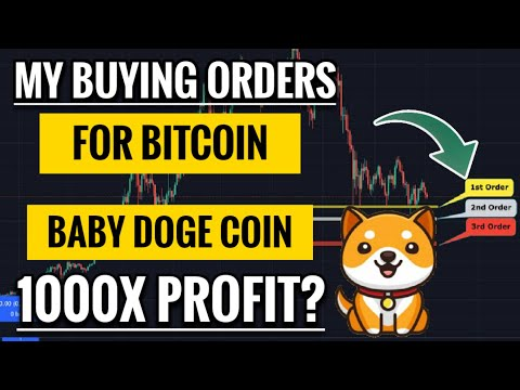 My Buying Orders For Bitcoin | Market Update | Can Baby Dogecoin Give 1000X Profit?