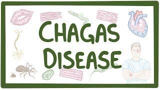 Chagas disease - causes, symptoms, diagnosis, treatment, pathology